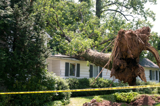 How to Handle Storm Damage to Your House