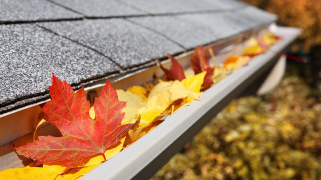 Here Are 3 Fall Roofing Tips to Help You Maintain Your Roof As the Season Changes!